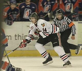Luke Walker (ice hockey) American ice hockey player
