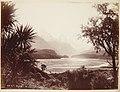 MA I367280 Te Papa. Dart River. Untitled landscape Album.jpg