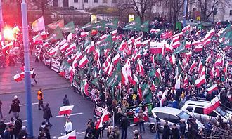 All-Polish Youth - All-Polish Youth on 2015 March of Independence