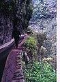 Madeira-18-Levada-2000-gje.jpg