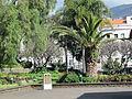 Madeira em Abril de 2011 IMG 1765 (5663778114).jpg