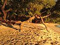 Magalawa Beach Front.JPG
