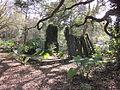 Magnolia Lane Plantation Quarterhouse Ruins 2.JPG