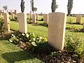 Major Anders Lassens grav, Argenta Gap War Cemetery, øst for Argenta, 1. september 2015..jpg