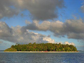Wildlife of Maldives - Maldivian Island
