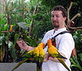 Man feeding parrots -Butterfly Park & Insect Kingdom -Sentosa-8a.jpg
