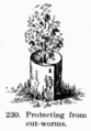 Manual of Gardening fig230.png