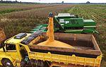 Maquinário agrícola do governo auxilia na colheita de milho em Capixaba (27123739782).jpg