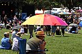 Mardi Gras Fair Day (6861137285).jpg