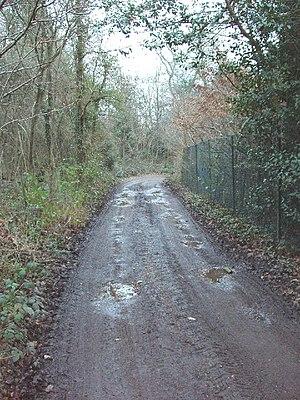 Marish Lane, near Denham. This lane is near th...
