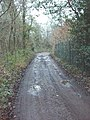 Marish Lane, near Denham - geograph.org.uk - 106246.jpg