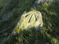 Marked stone on the summit of Cacra Hill - geograph.org.uk - 297666.jpg