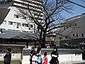 Matsuyama, Ehime Prefecture, Japan - panoramio.jpg