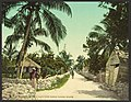 Meadow Street in Bain's Town, Nassau, Bahama Islands-LCCN2008679536.jpg