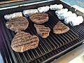 Meat cooking on a grill.jpg