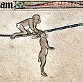 Medieval rabbits (1).jpg