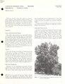 Melicoccus bijugatus Jacq., Sapindaceae - Quenepa, soapberry family (IA CAT10668086).pdf