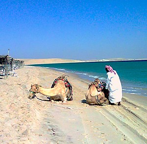 Mesaieed - A tourist resort in Mesaieed's desert.