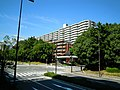 Minatojimanakamachi - panoramio (24).jpg