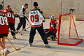 Minnesota Hockey Day in Iraq DVIDS145048.jpg