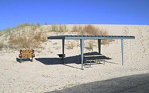 Monahans Sandhills State Park