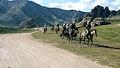 Mongolian horse 13.JPG