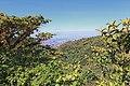 Monteverde Reserve Costa Rica 04.jpg