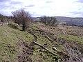 Moorland, near Flynnobwia - geograph.org.uk - 371449.jpg