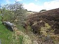 Moorland at Stralongford - geograph.org.uk - 796903.jpg
