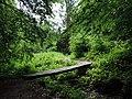 Mostík l. - panoramio.jpg