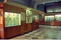 Motive Power Gallery - BITM - Calcutta 2000 166.JPG