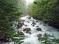 Mugecou mountain stream.jpg
