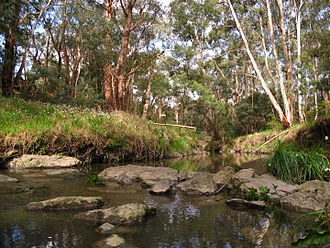 Mullum Mullum Creek - The Mullum Mullum Creek at Mitcham