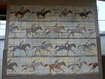 Mural of horse racing on SKM train station Sopot Wyścigi - 4.jpg