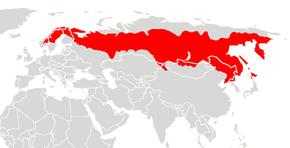 Description de l'image Myodes rufocanus range map.png.