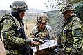 NATO Allies Show Their Spirit!.jpg