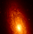 NGC 2090 hst 05446 0w 606.png
