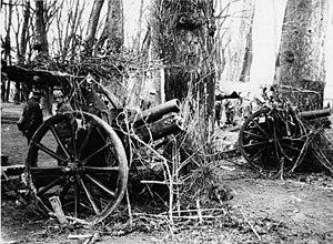 NLS Haig - Howitzers.jpg