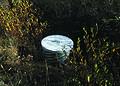 NRCSMT01037 - Montana (4923)(NRCS Photo Gallery).jpg