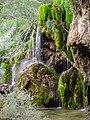 Nacimiento del Rio Cuervo 15062003131640.jpg - WLE Spain 2015.jpg