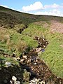 Nant Cleisfer headwater stream - geograph.org.uk - 448707.jpg