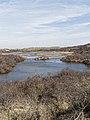 Nationaal Park Kennemerland (40656540784).jpg