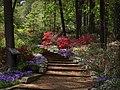 National Arboretum in April (23491119581).jpg