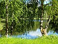 Nature of Kenozersky national Park.jpg