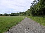 Nebenbahn Wennemen-Finnentrop (5829029771).jpg