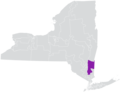 New York State Senate District 41 (2012).png