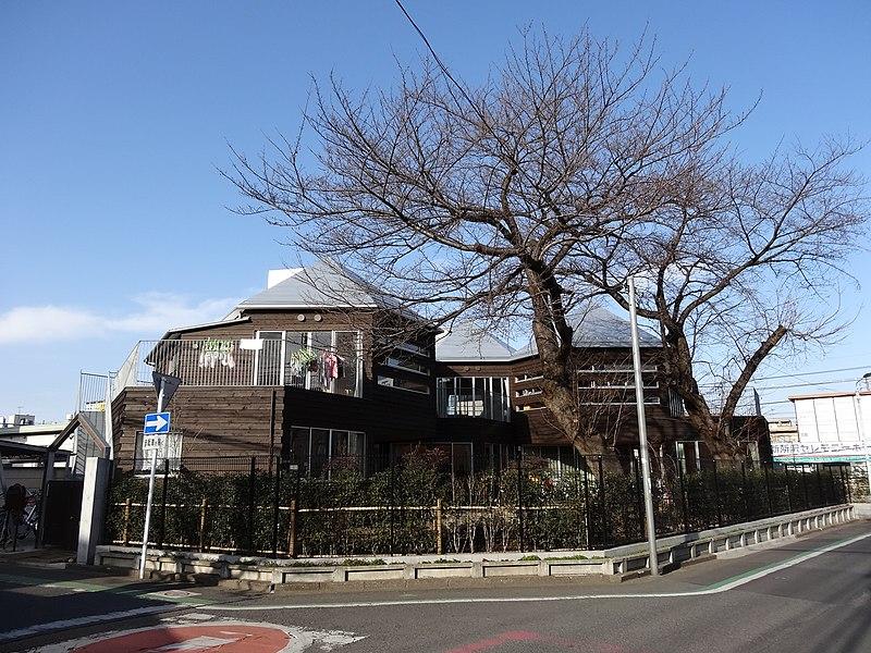 File:Nicot-shin-tokorozwa 2014-02-7 2014-02-18 13-30.JPG