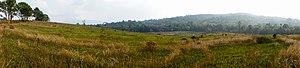 Khao Yai National Park - Nong Pak Chee grassland