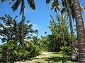 Nukubati Island, Fiji - panoramio - catlin.wolfard.jpg
