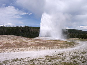 Geyser - Fountain Geyser erupting from the pool (left) and Old Faithful geyser (cone geyser having mound of siliceous sinter) in Yellowstone National Park erupts approximately every 91 minutes (right).